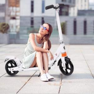Hesyovy Micro Scooter für Erwachsene (Weiß)